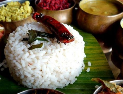Ayurveda tradicionalna Indijska holistička znanost
